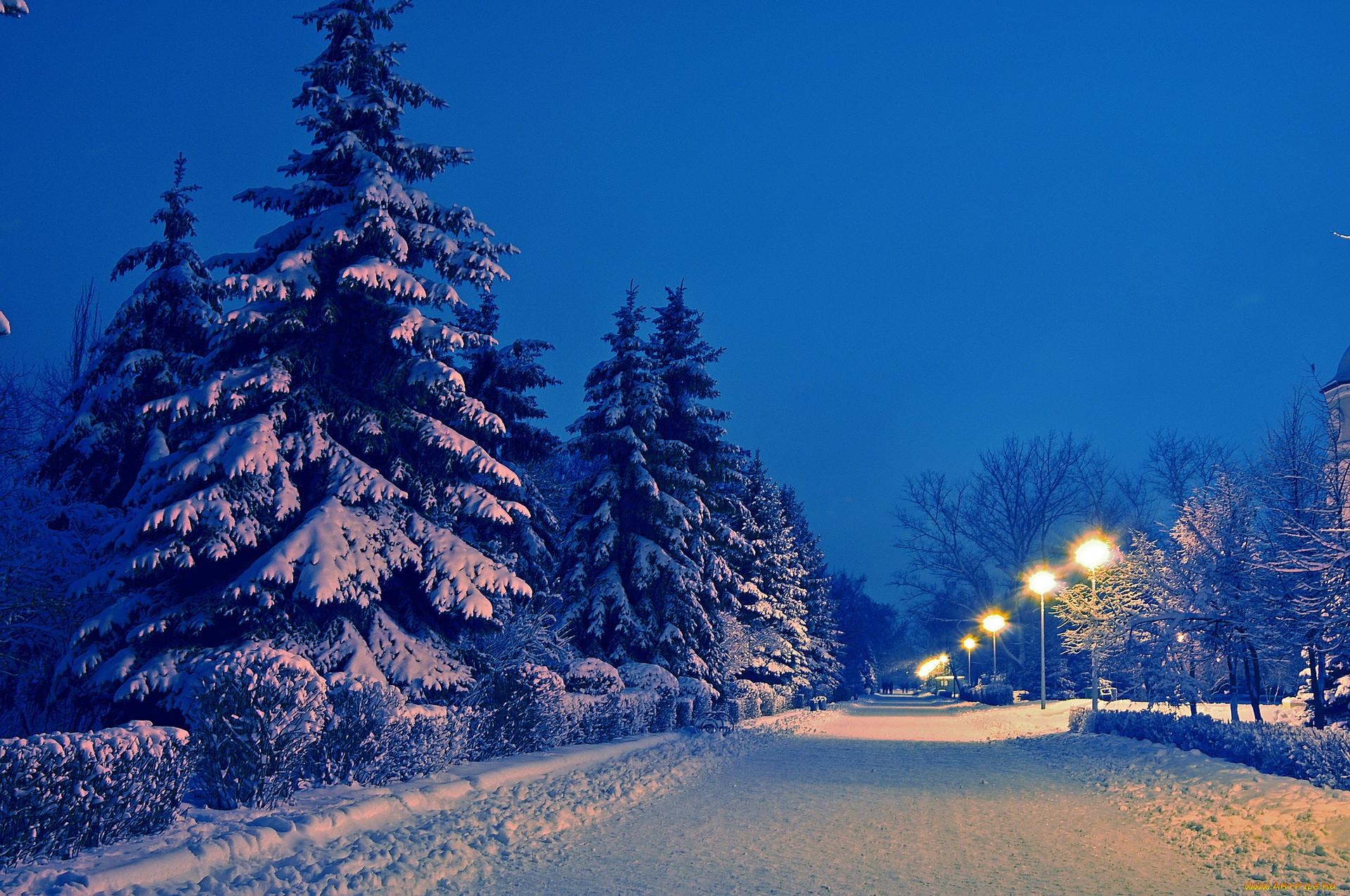 начале сезона картинки на рабочий стол ночная зима экспертной фотопортретной